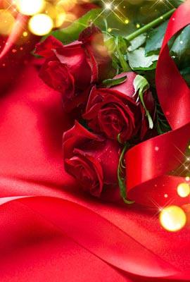 Carte cadeau chez Charbonneau l'Expert, fleuriste à Laval