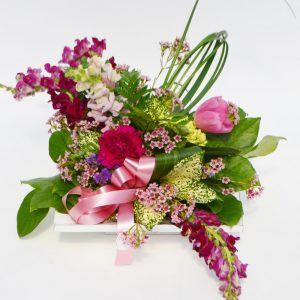 Arrangement fuchsia