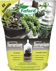 Ensemble pour terrarium