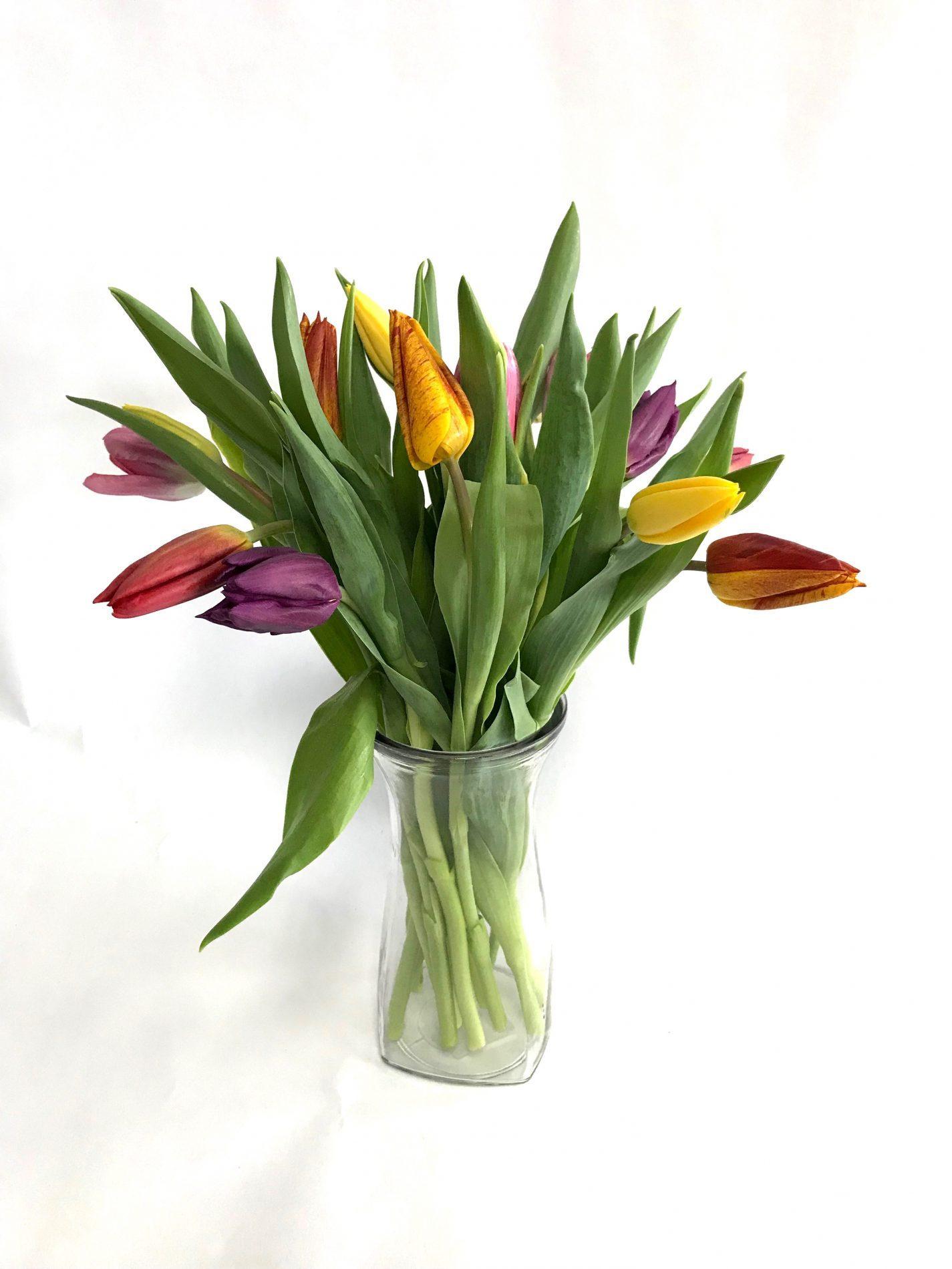 bouquet de tulipes mélangés